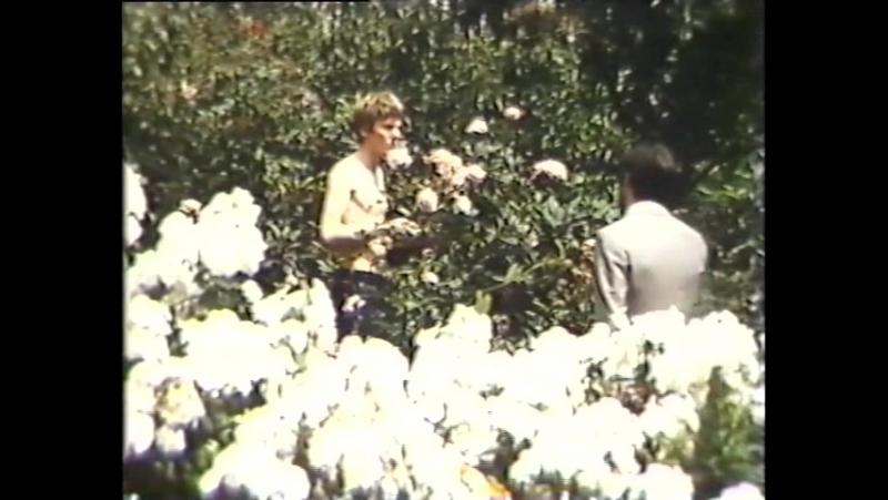 Никол Уильямсон в фильме Смех в темноте Драма великобритания Франция 1969
