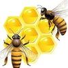 БИРУКОМ-магазин товаров пчеловодства