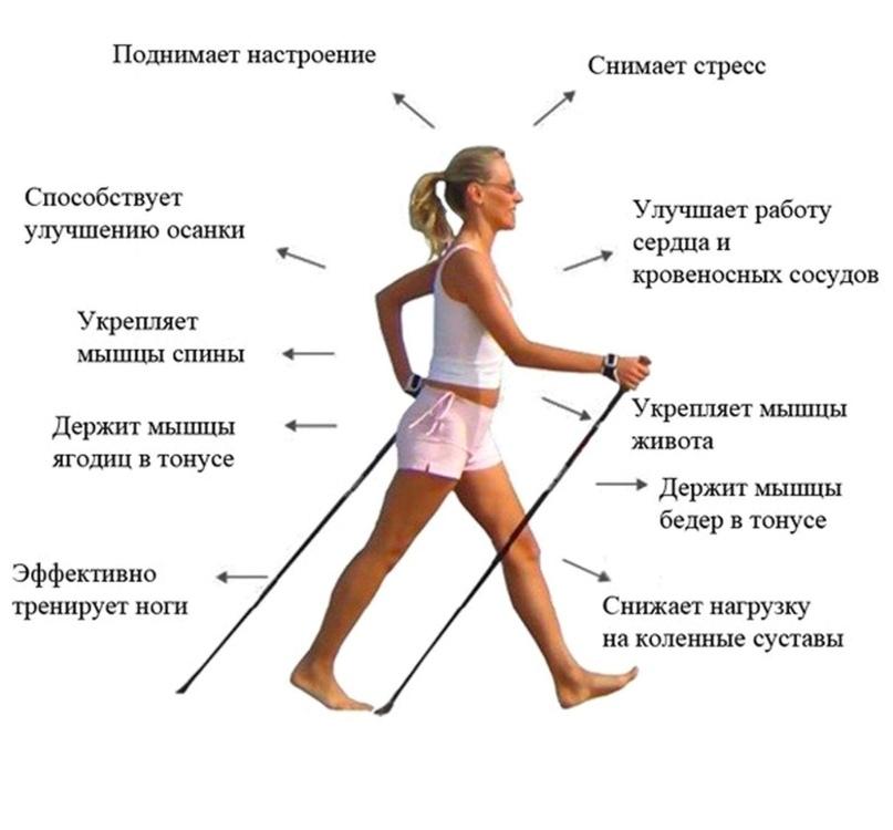 1000000000 пудов)))))))) скандинавская ходьба с палками при шейном остеохондрозе что тут