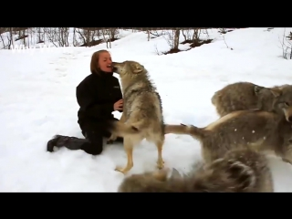 Животные Обнимая людей - Объятия животных Люди Видео - Объятия животных Человеческая компиляция