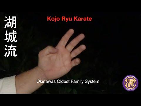 Kojo Ryu Koshinkan