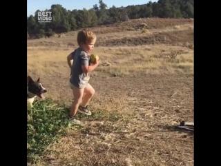 Малыш и собакен