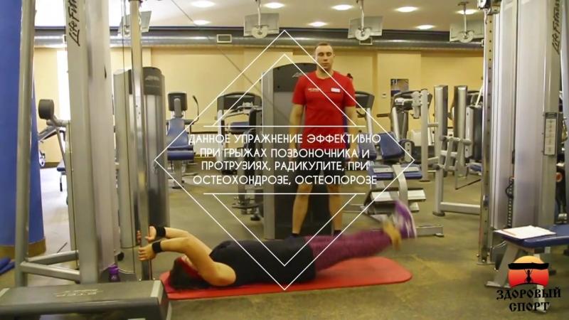 Эффективные упражнения при грыжах позвоночника протрузиях радикулите остеохон