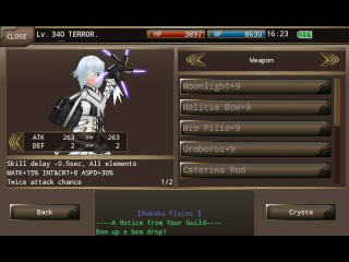 Iruna Online- Ninja Magic Equip Build