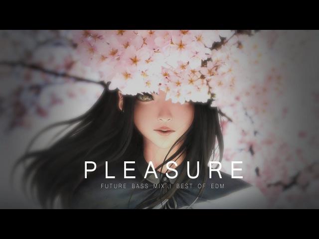 Pleasure Future Bass Mix 2017 Best of EDM