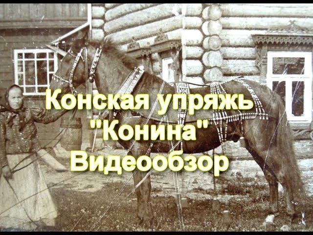Конская упряжь, конина, видеообзор.