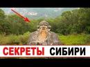 Вот и открылась правда о Сибири Почему туда едут люди из всего мира но и визитеры с других планет