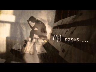 Soha - Mil pasos ( with lyrics)