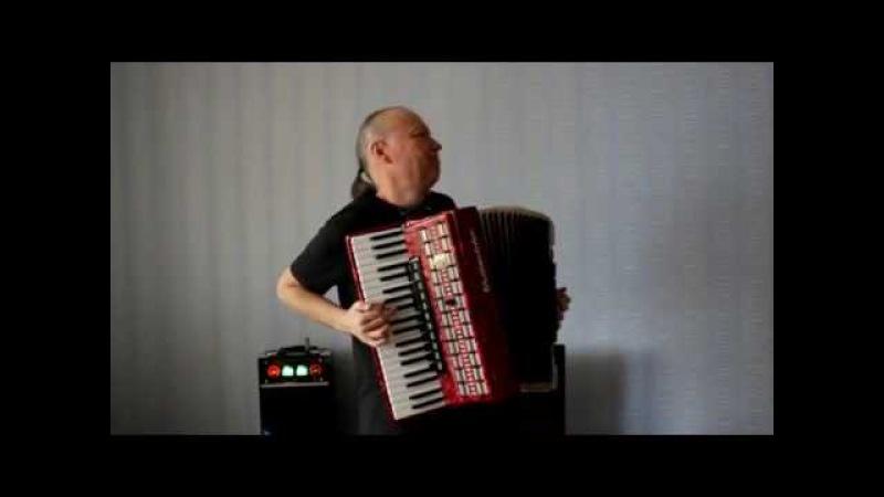 Сиреневый туман Николай Донецкий (Accordion version).Музыкант (аккордеонист) Казани.