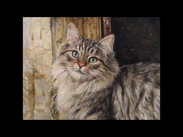 Gato al óleo Oil painted cat