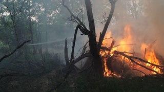 Оперативна інформація щодо ліквідації пожежі сухої трави у Чорнобильській зоні