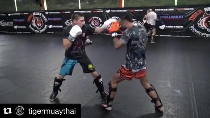 MMA Fighters KZ Нұрсұлтан Қасымханов