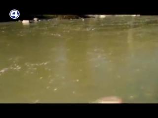Река Тальтия. Новости 4 канал