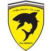 Tiburon club Russia (Hyundai Tuscani, Coupe)