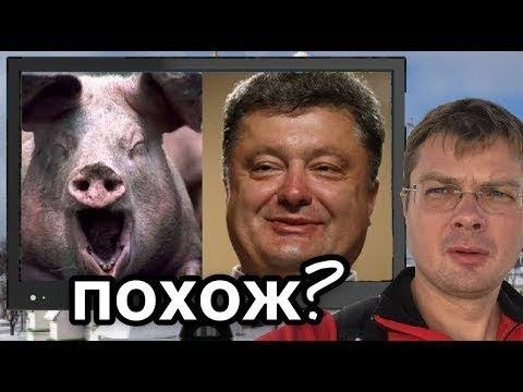 Семченко Пьяная свинья Порошенко аж захрюкал от удовольствия