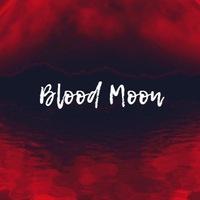 BloodMoon. Студия звукозаписи