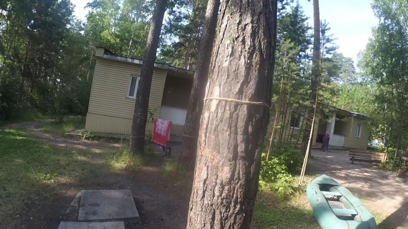 Попытка аппарат прикрепить на деревососна без единго гвоздя