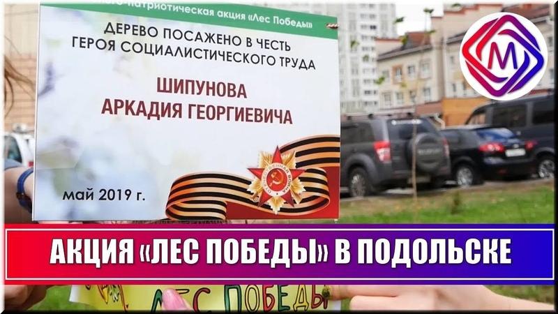 Подольчане высадили аллею Героев во время акции Лес Победы