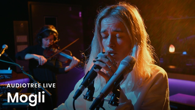 Mogli - Wanderer | Audiotree Live