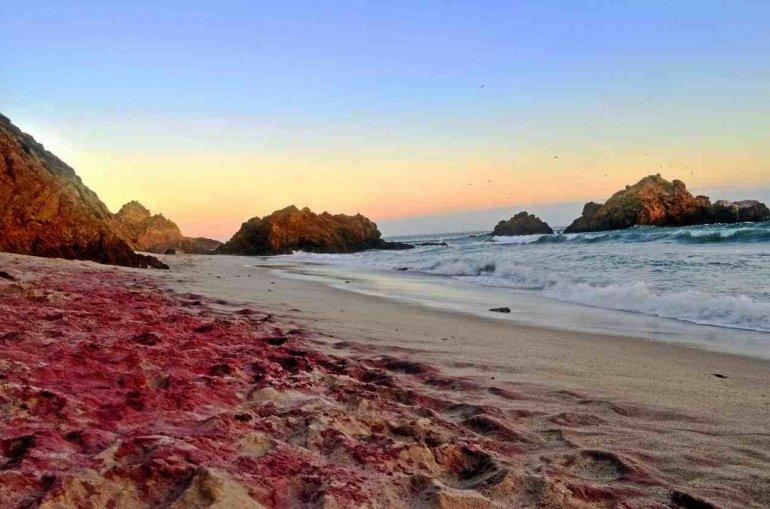 Пфайфер - пляж с фиолетовым песком, изображение №4