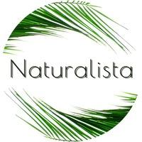 Логотип NATURALISTA / Школа природного творчества