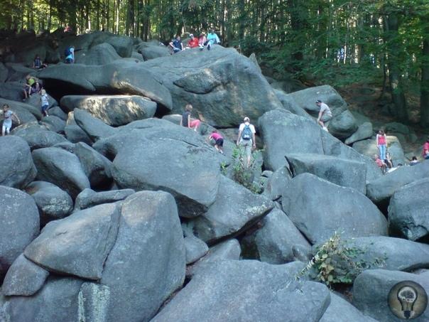 «Каменное море» Германии, которое больше похоже на каменную реку. Немецкое слово «фельзенмеер» не только труднопроизносимое для нас, но и не очень понятное по смыслу в переводе - «каменное
