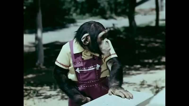 ◄Новые приключения Дони и Микки(1973)реж.Георгий Бабушкин, Степан Исаакян