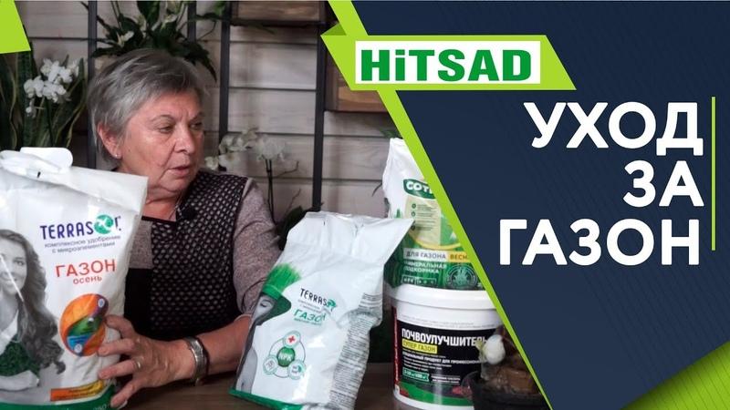 Уход За Газоном в Августе Сентябре Советы садоводам от Хитсад ТВ уход за газоном летом
