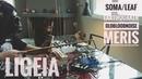 LIGEIA \\ Soma Lyra-8 PiPe Leaf Audio Soundbox \\ Dark Ambient Synth Jam