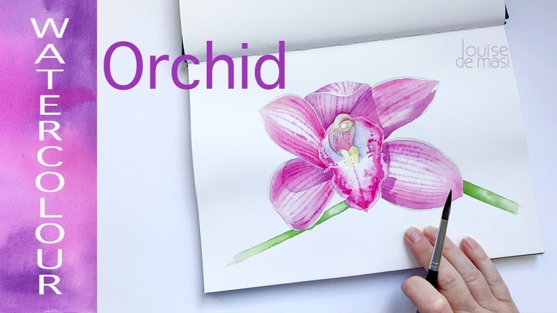 How to Paint an Orchid in Watercolour Watercolor Orchid Demonstration Louise De Masi