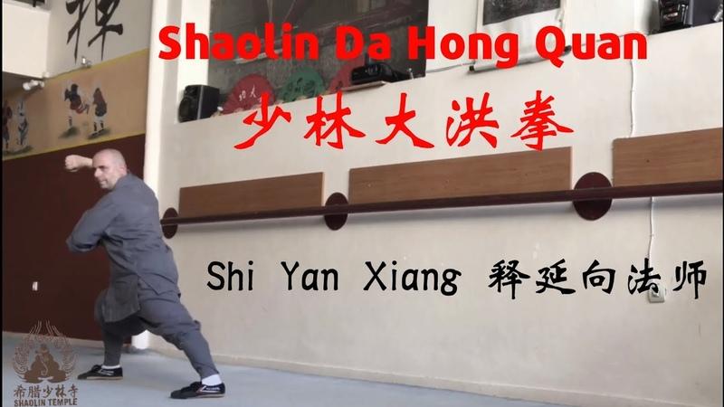 Shaolin Da Hong Quan 少林大洪拳 | Shi Yan XIang 释延向法师 | Shaolin Temple Greece 希腊少林寺