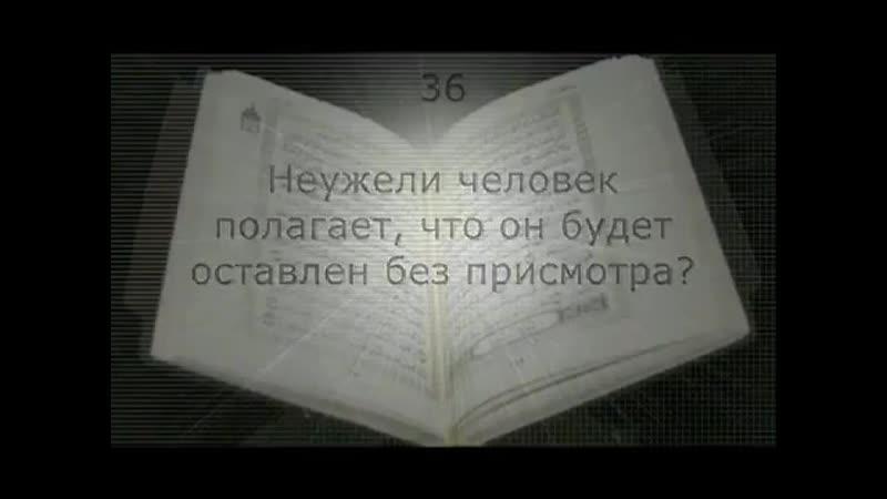 B__i__l__a__l__Bx-ot_Vhowc.mp4