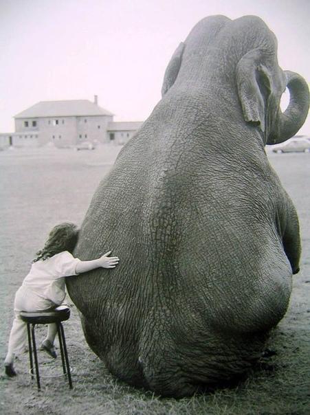 Снимок Джона Драйсдейла, Англия, 1986 год.