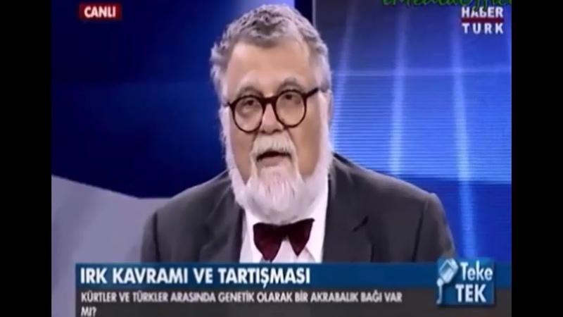 Celal Şengör-Türkler, Kürtler ve Dil Devrimi