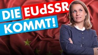 EU-Superstaat? Der Plan von Merkel, Juncker und Macron. - Corinna Miazga in Fulda am 23. Mai 2019