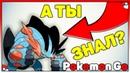 Ч.1 Половые Гендерные Отличия Покемонов в Покемон го Pokemon GO