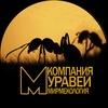 Компания муравей - мирмекология
