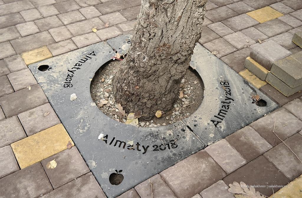 Ограждение дерева в Алматы, Казахстан 2019