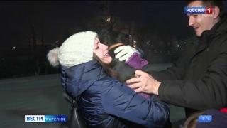 Собака из Мурманска, которую нашли петрозаводские волонтеры, вернулась в семью