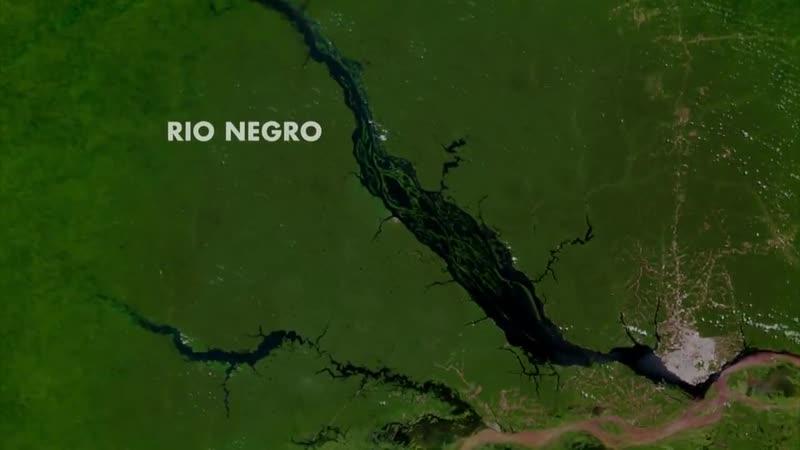 Амазонка плавающий лес Неизведанные острова Discovery Channel