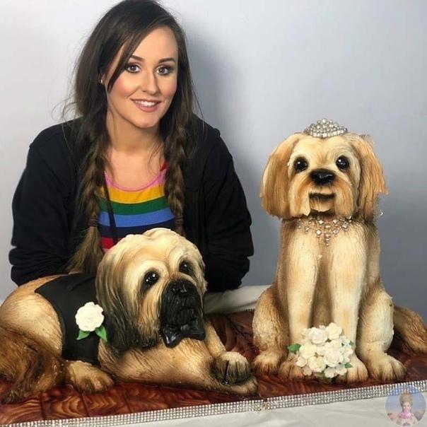 Невероятно реалистические торты Молли Роббинс. Молли Роббинс (Molly Robbins) из английского графства Ланкашир занимается кондитерским искусством последние 10 лет. Она делает 3D-торты, которые