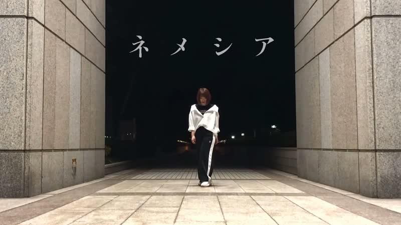 【オリジナル振付】ネメシア flower 踊ってみた【おさや】 1080 x 1920 sm34931491