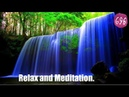 Отдых с Шумам Природы, пение птиц, спокойный водопад. Relax and Meditation.