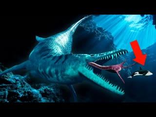 tophype 10 Невероятных Существ, Которые Опаснее Мегаладона
