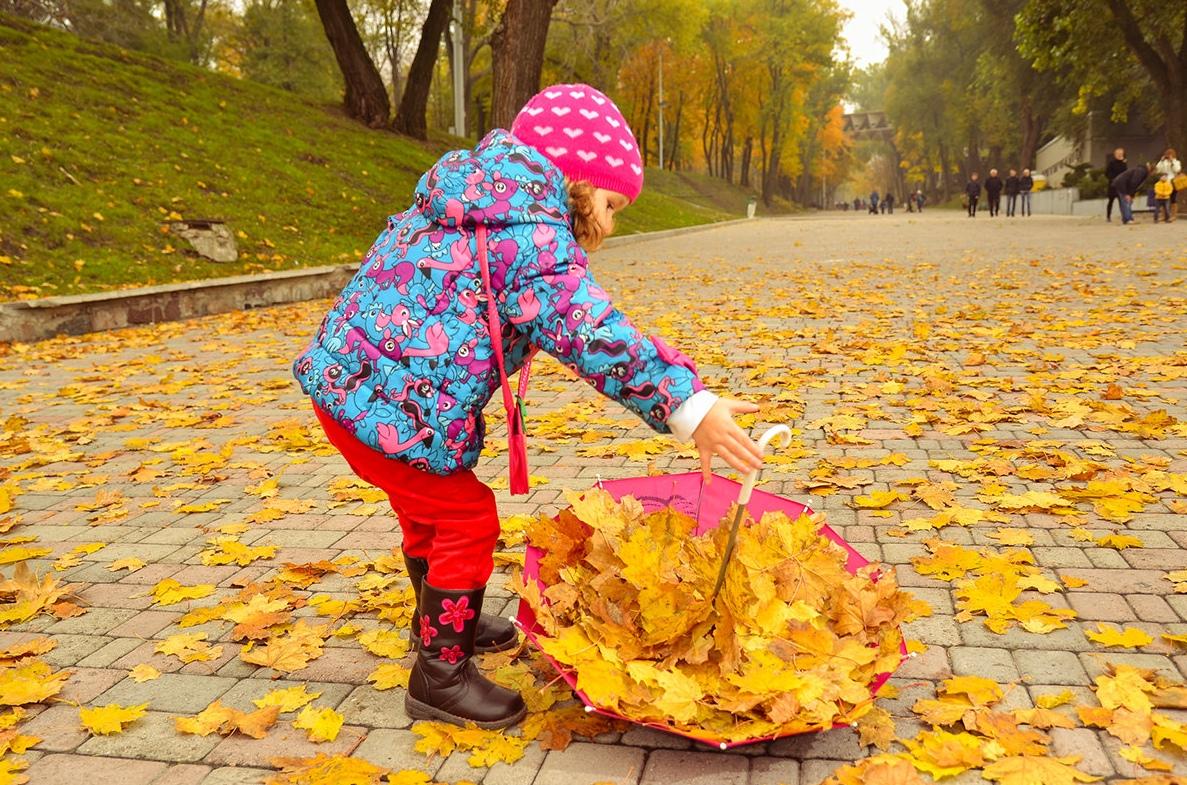 зонт с желтыми осенними листьями