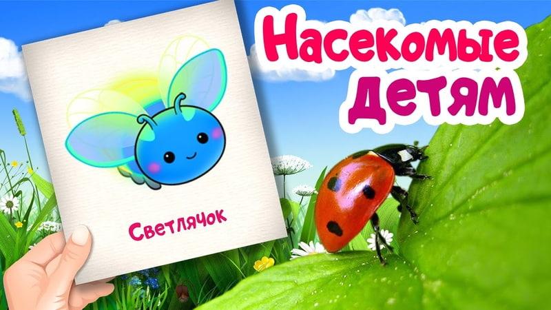 Учим насекомых Карточки Домана Развивающие мультики для детей