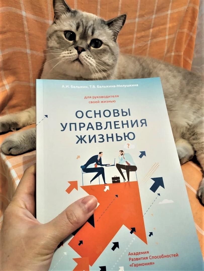 Кот, который умеет читать, изображение №1