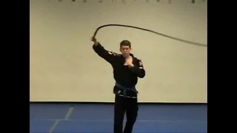 The Whip Master YouTube