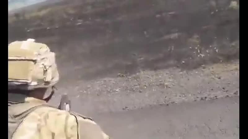 Укры под Саур-Могилой (4 августа 2014) :