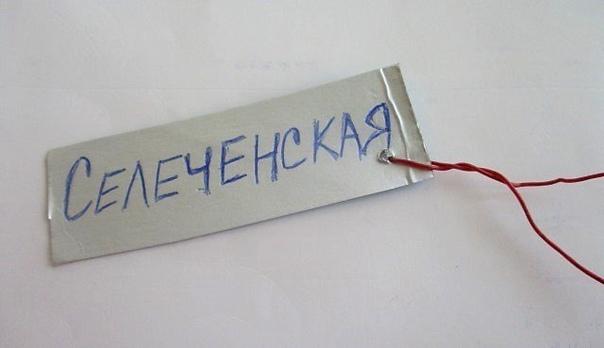 Этикетки для подписи сортов саженцев из коробок от сока.